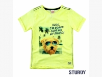 Shirt Sturdy ..